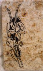 Floral Image Closeup