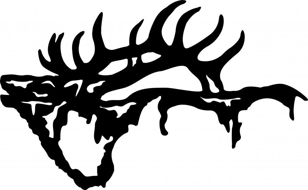 elk head2.jpg