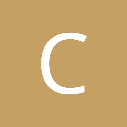 carolinatinter