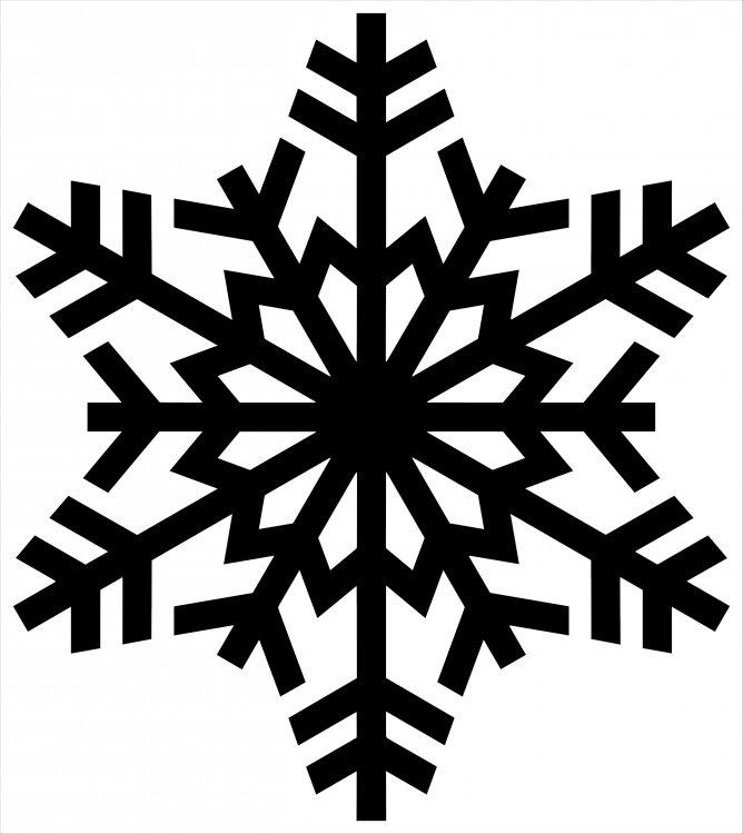 snowflake.thumb.jpg.66a2cf9baa022f1ac62c4285b9e99c00.jpg