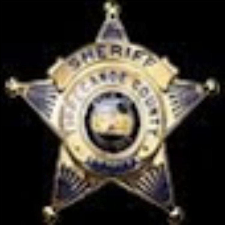 Sheriff Badge.jpg