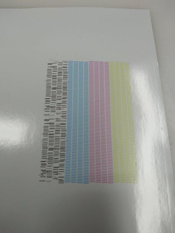 SP300i test print.jpg